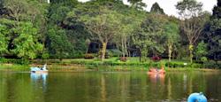Kalasa - Kudremukh National Park - Udupi - Mangalore Tour Package